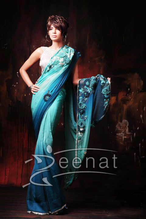 Embroidered Chinyere Saree Style