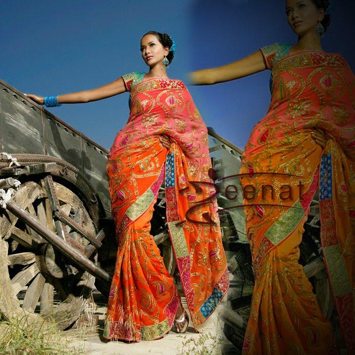 Garima Parnami in Indian Saree