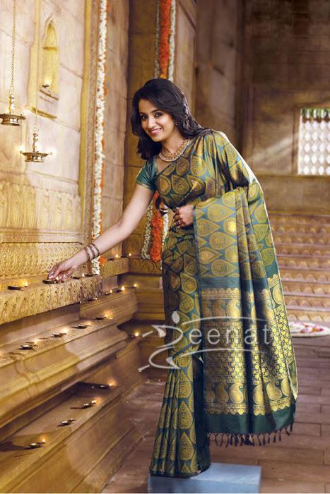 Trisha in banarsi Saree