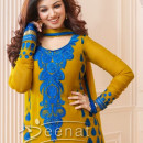 Ayesha Takia In Churidar Salwar Kameez 1D