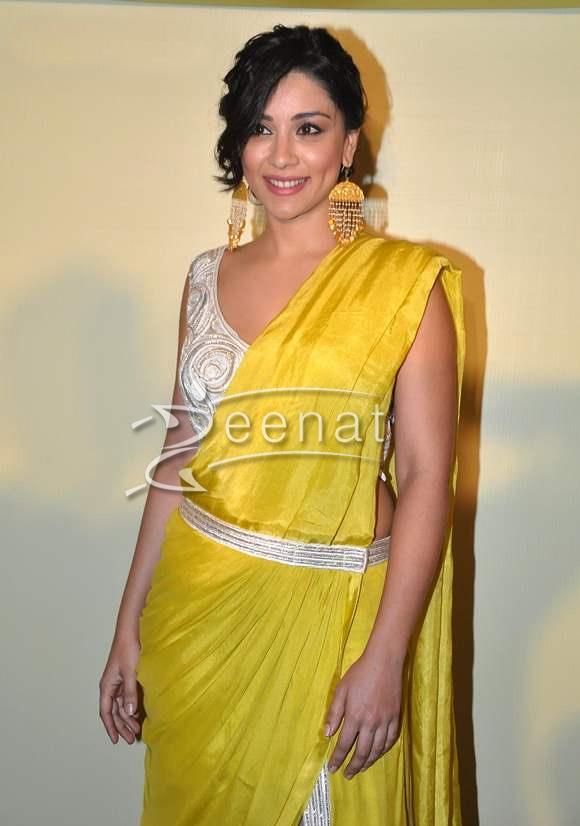 Amrita Puri In Designer Saree